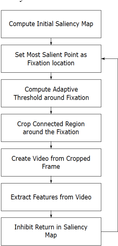 Figure 4 for Unsupervised Foveal Vision Neural Networks with Top-Down Attention