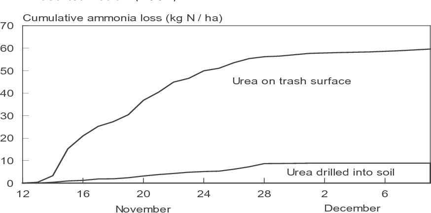 Fig. 1. Ammonia loss from urea broadcast onto trash surface and drilled 5 cm into soil