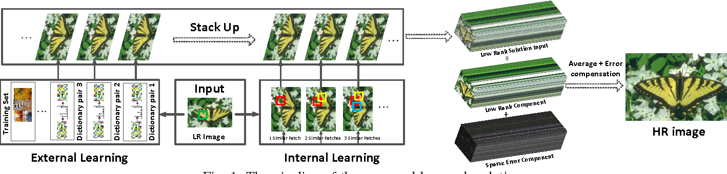 Figure 1 for How Does the Low-Rank Matrix Decomposition Help Internal and External Learnings for Super-Resolution