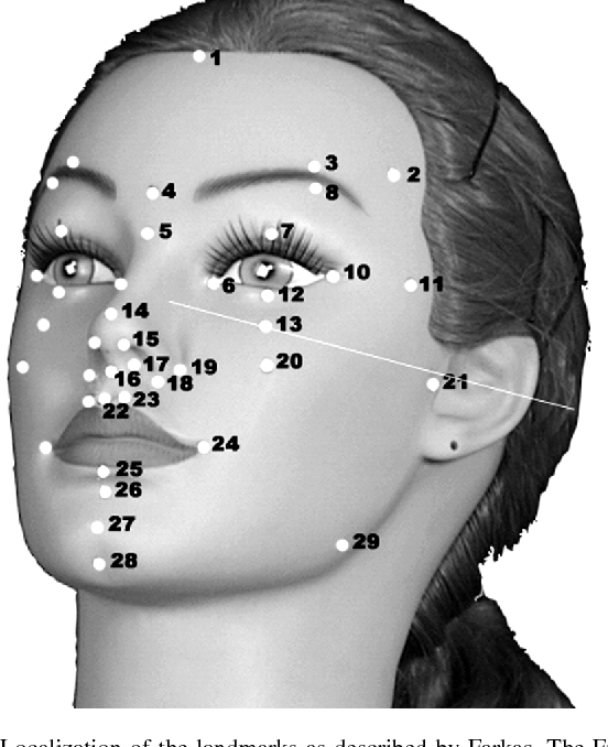 The facial 3d laser scanning