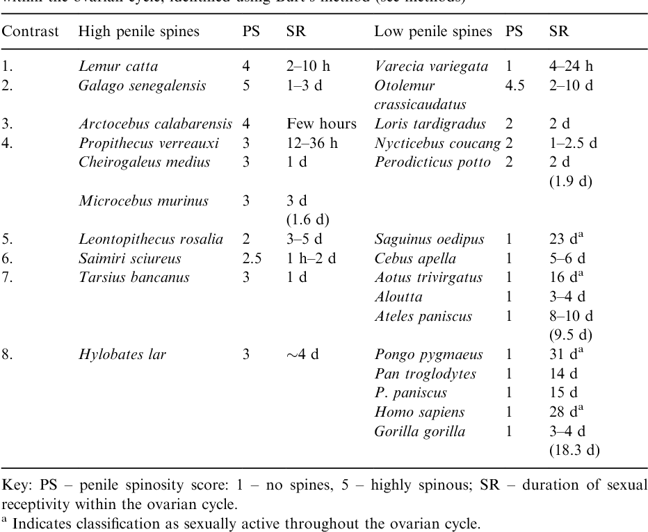 Sperm competition risk and male genital anatomy: comparative ...