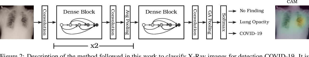 Figure 3 for A free web service for fast COVID-19 classification of chest X-Ray images