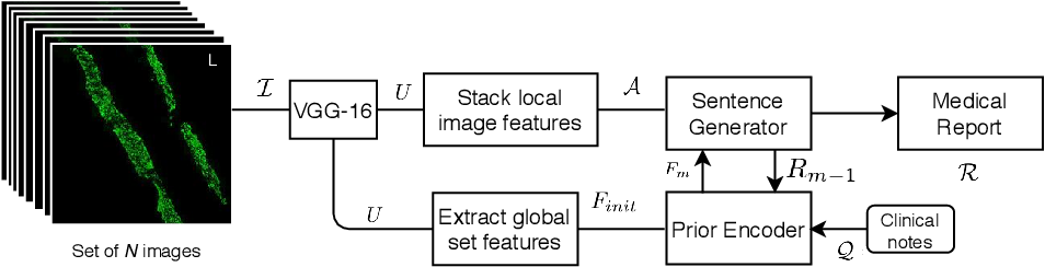 Figure 1 for CORAL8: Concurrent Object Regression for Area Localization in Medical Image Panels