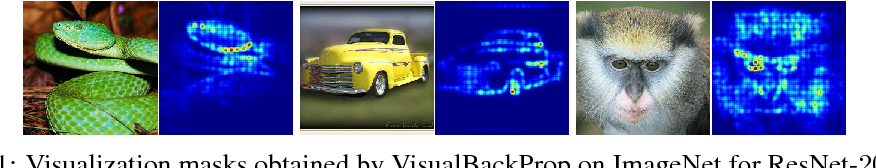 Figure 1 for VisualBackProp: efficient visualization of CNNs