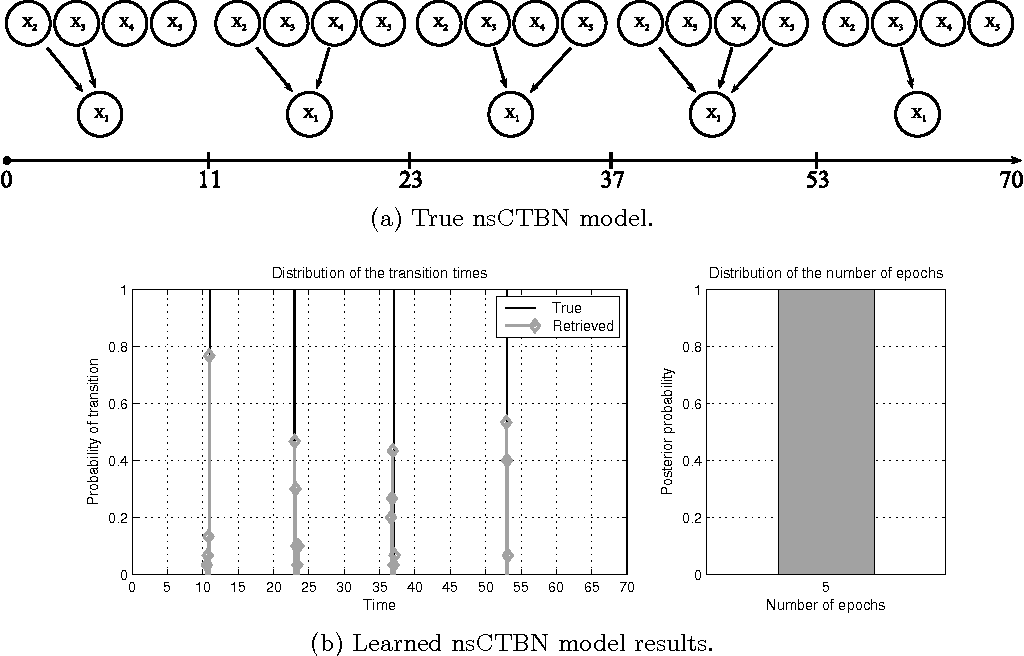 Figure 2: nsCTBN generated dataset number 3: (a) true graphs sequence over E=5 epochs and (b) distribution of the transition times (left) and posterior over epochs (right) associated with the nsCTBN inferred under the UNE setting.
