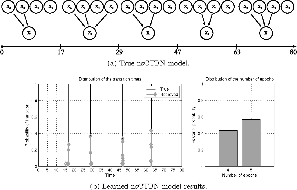 Figure 3: nsCTBN generated dataset number 9: (a) true graphs sequence over E=5 epochs and (b) distribution of the transition times (left) and posterior over epochs (right) associated with the nsCTBN inferred under the UNE setting.