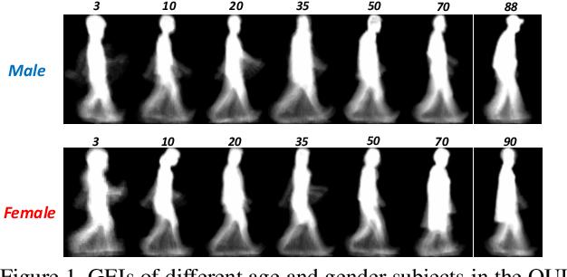 Figure 1 for Ordinal Distribution Regression for Gait-based Age Estimation