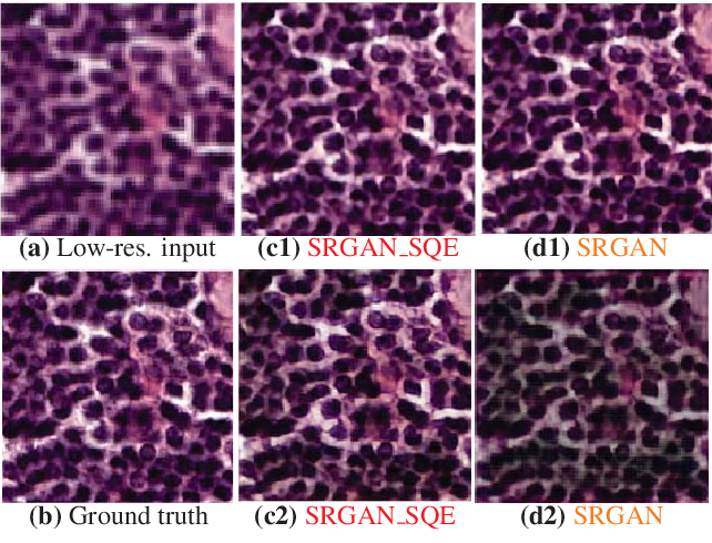 Figure 4 for Robust Super-Resolution GAN, with Manifold-based and Perception Loss