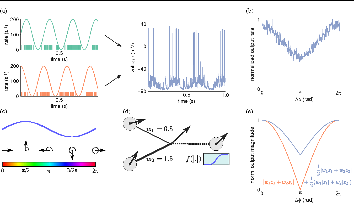 Figure 1 for Neuronal Synchrony in Complex-Valued Deep Networks