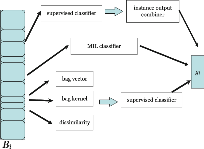 Figure 1 for Characterizing multiple instance datasets
