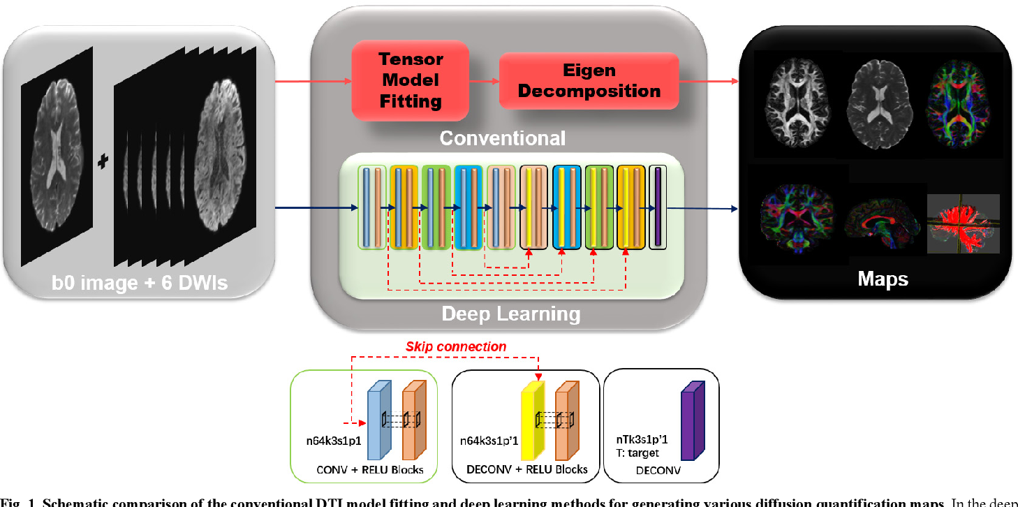 Figure 1 for Deep Learning for Highly Accelerated Diffusion Tensor Imaging