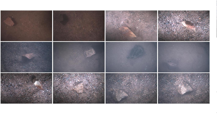 Figure 2 for A Benchmark dataset for both underwater image enhancement and underwater object detection
