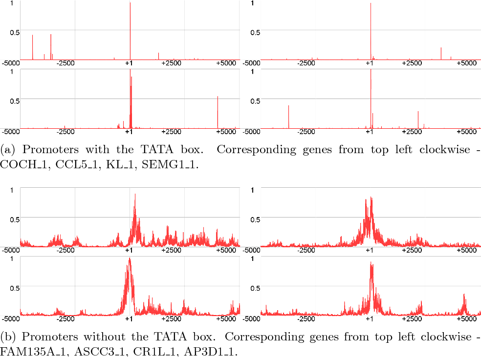 Figure 3 for PromID: human promoter prediction by deep learning
