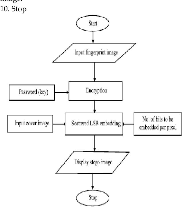 PDF] Extracting Spread-Spectrum Hidden Data from Picture