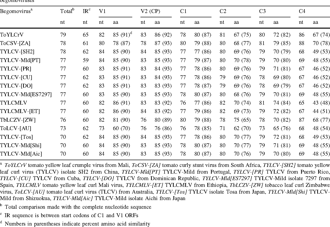 Table 2 Percent nucleotide identities for the DNA component and intergenic region (IR) and nucleotide and derived amino acid identities and similarities for open reading frames of the TYLC/ToLC-associated begomovirus (tomato leaf curl Mali virus [ToLCMV]) and those of other begomoviruses