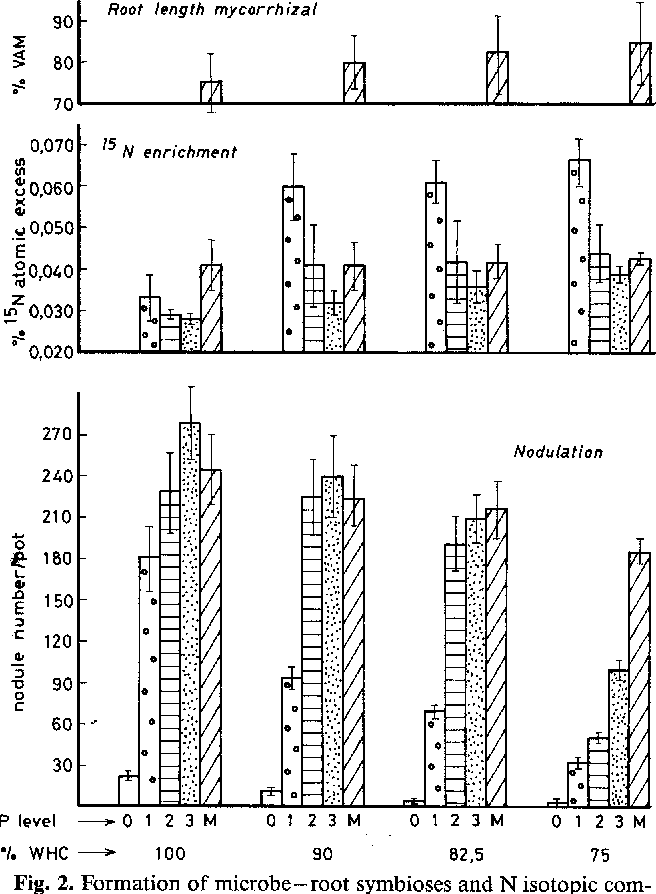 Figure 2 From Influence Of Mycorrhiza Vs Soluble Phosphate On