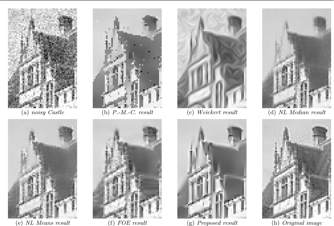 Fig. 21 A comparative study for image denoising: case of the image Castle; zoom on an extract for a better visualisation.