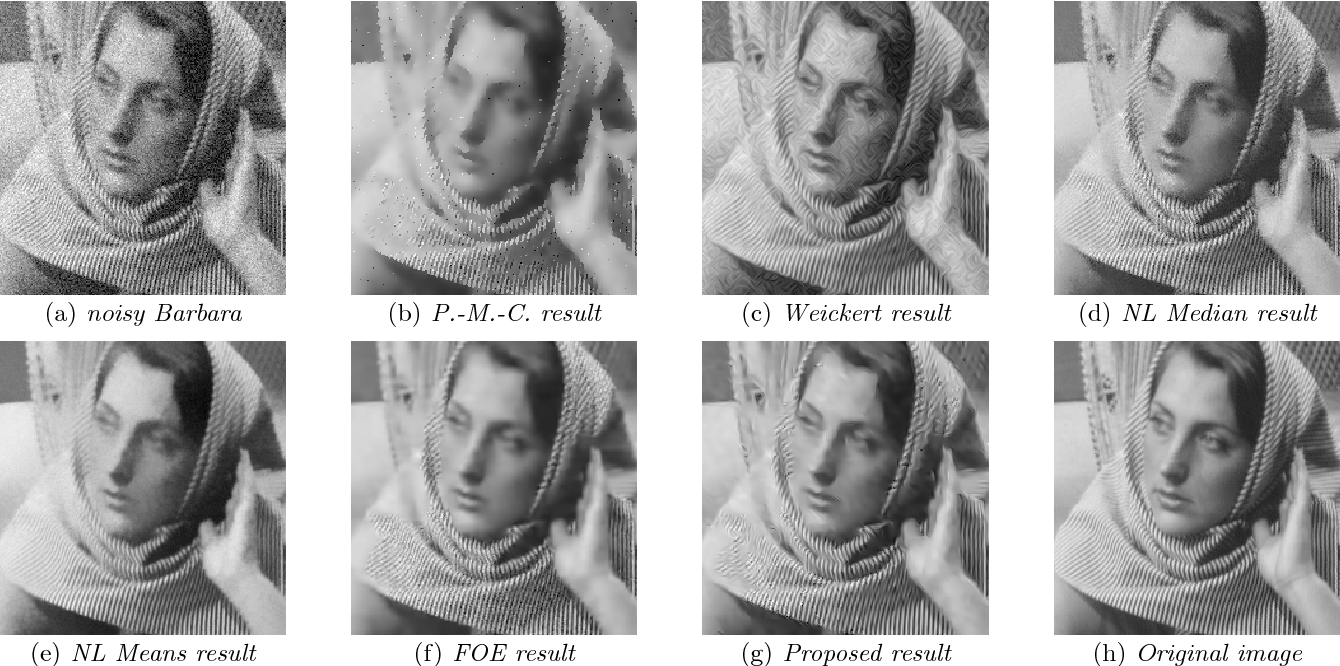 Fig. 22 A comparative study for image denoising: case of the image Barbara.