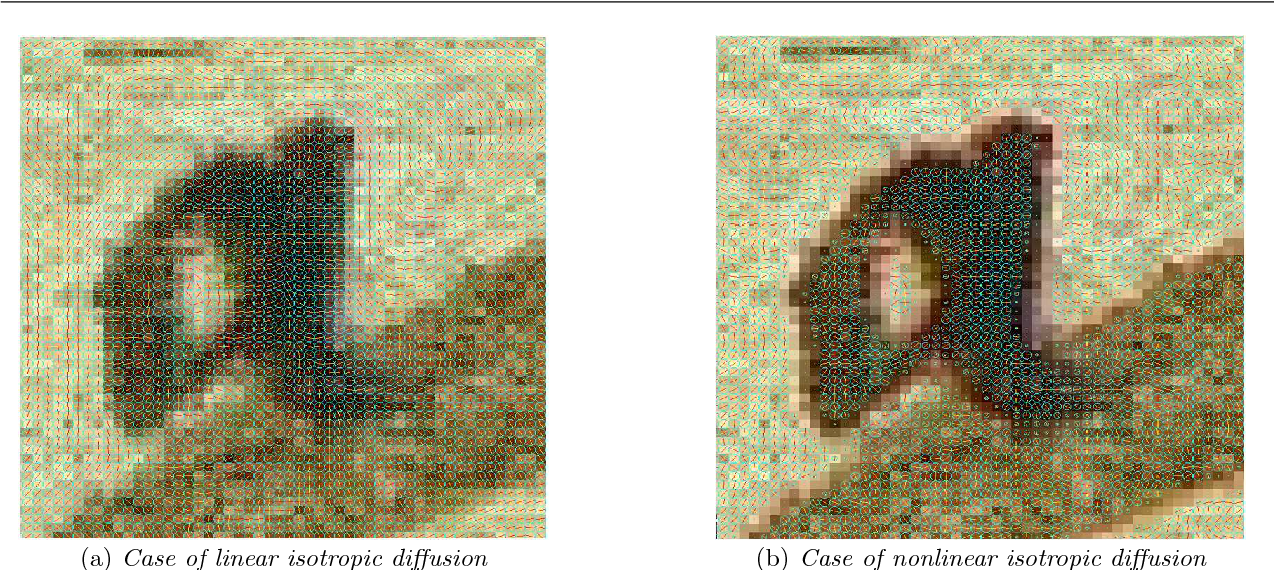 Fig. 5 Impact of linear and nonlinear isotropic diffusion on a test image.