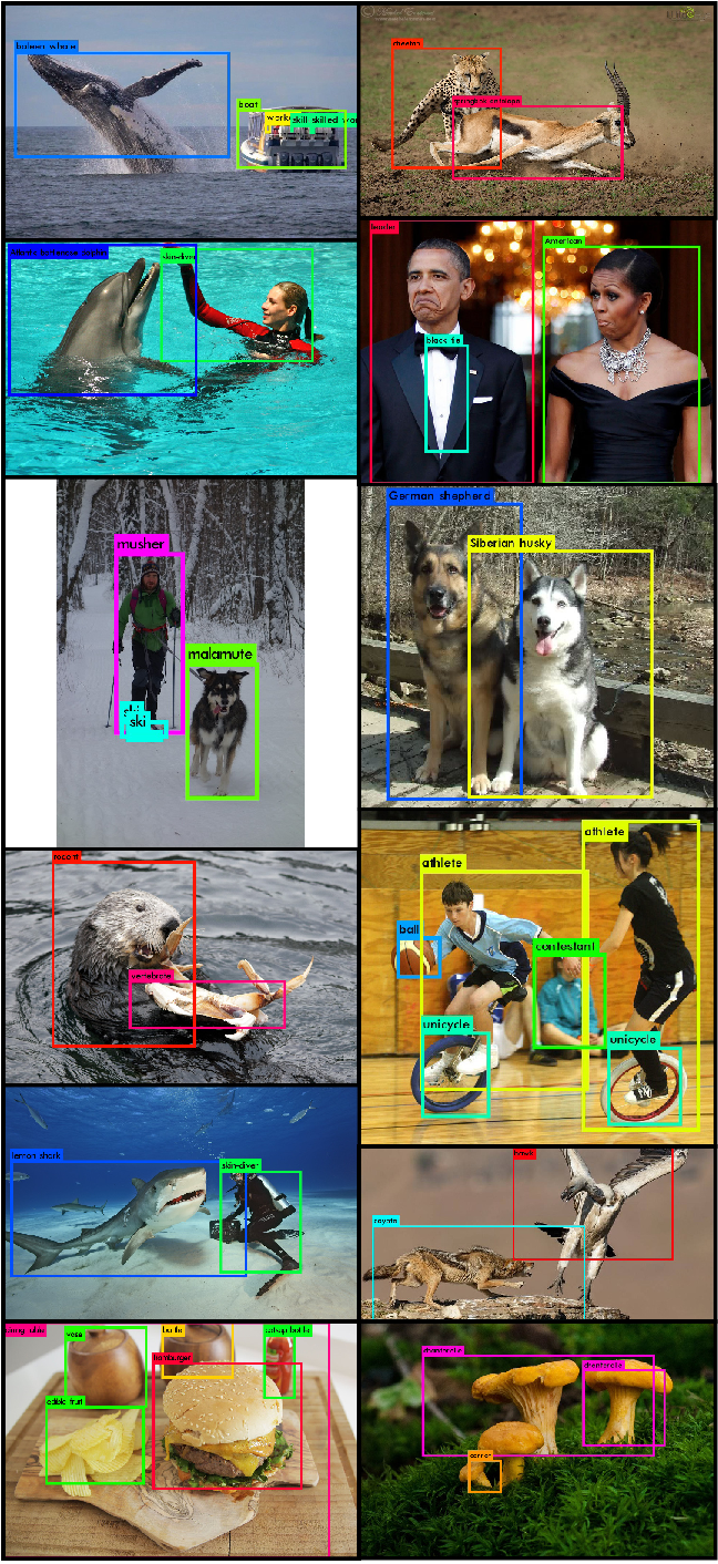 Figure 1: YOLO9000. YOLO9000 can detect a wide variety of object classes in real-time.