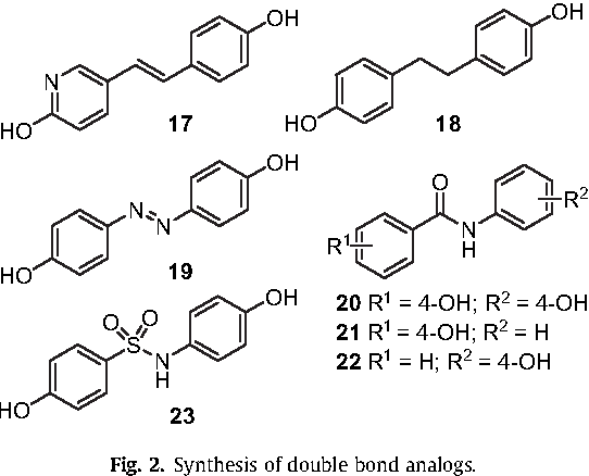 Fig. 2. Synthesis of double bond analogs.