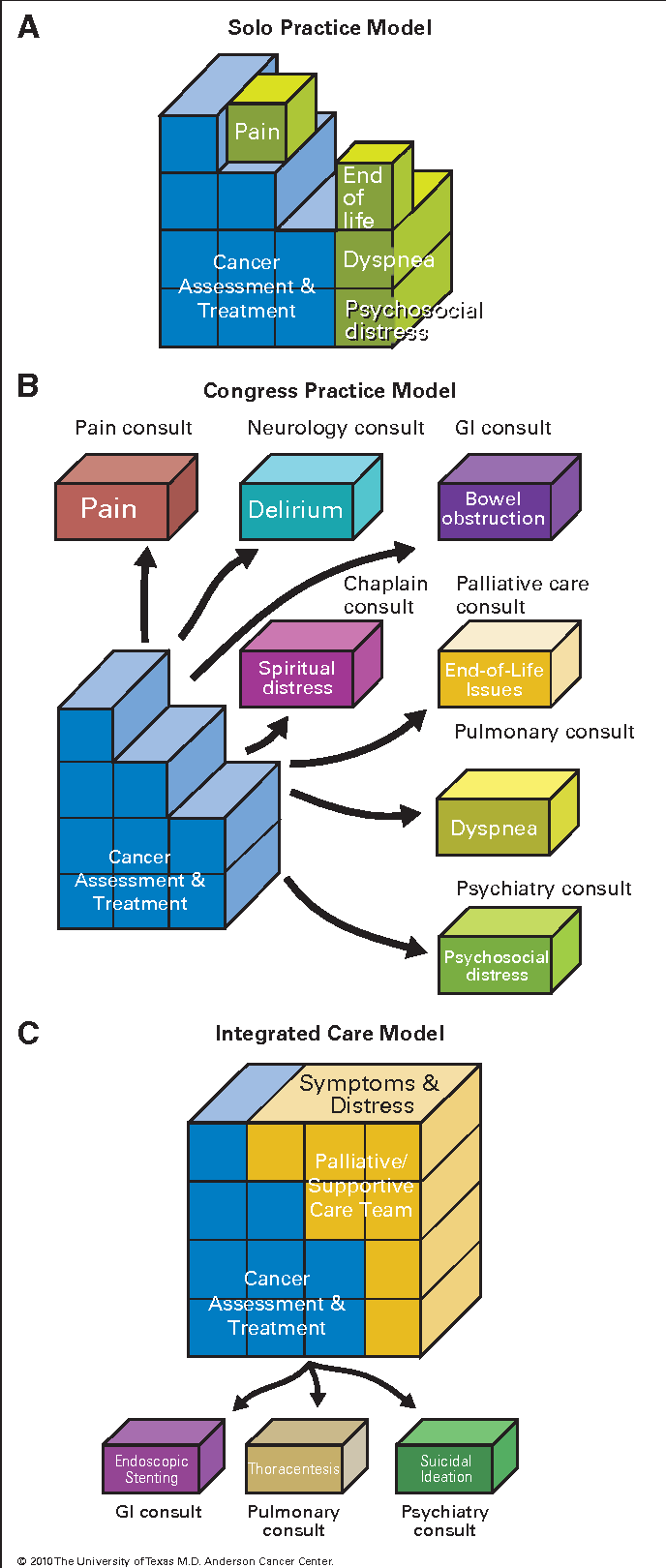 Figure 3 from Integrating supportive and palliative care in