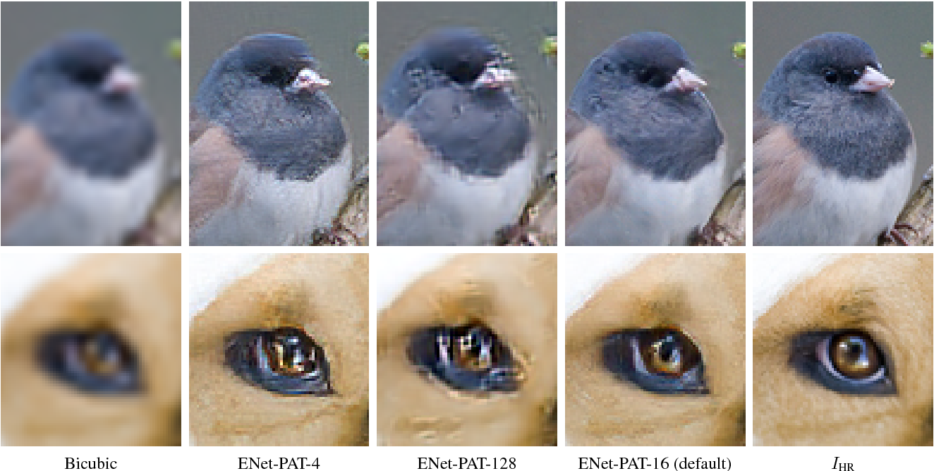 Figure 2 for EnhanceNet: Single Image Super-Resolution Through Automated Texture Synthesis