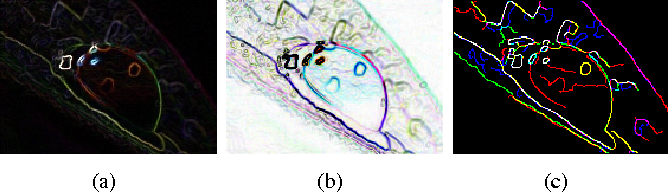 Figure 2 for Color image denoising by chromatic edges based vector valued diffusion