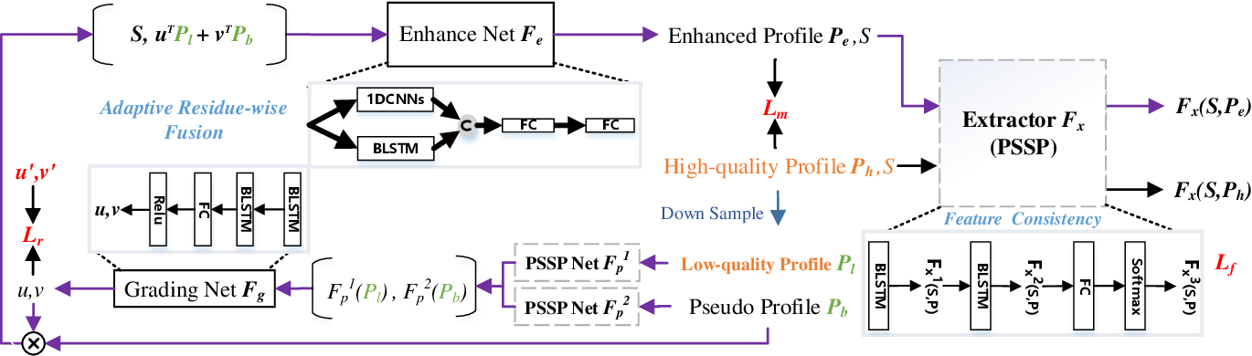 Figure 3 for Adaptive Residue-wise Profile Fusion for Low Homologous Protein SecondaryStructure Prediction Using External Knowledge