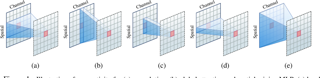Figure 1 for Demystifying Local Vision Transformer: Sparse Connectivity, Weight Sharing, and Dynamic Weight