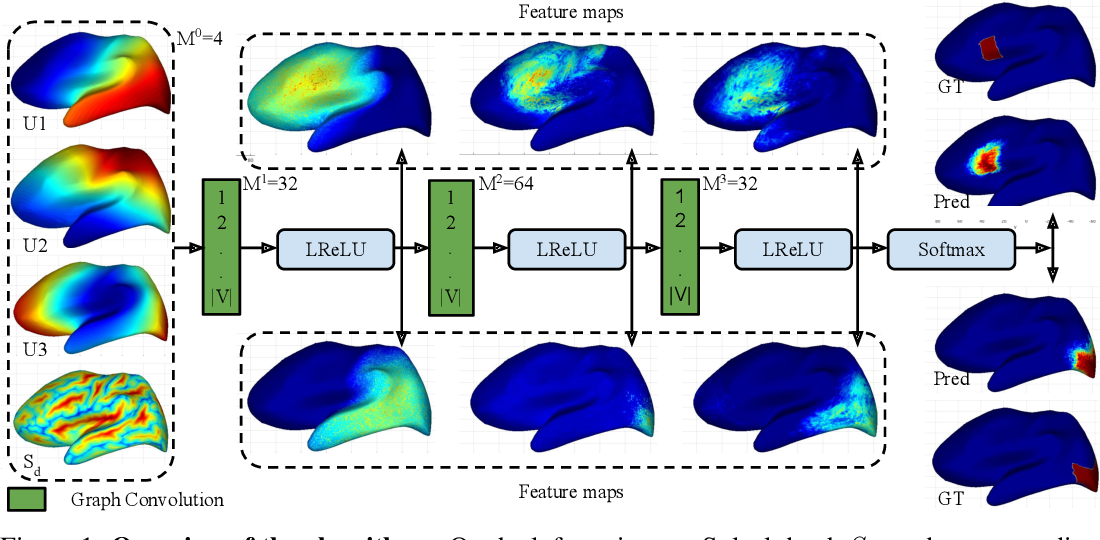 Figure 1 for Graph Convolutions on Spectral Embeddings: Learning of Cortical Surface Data
