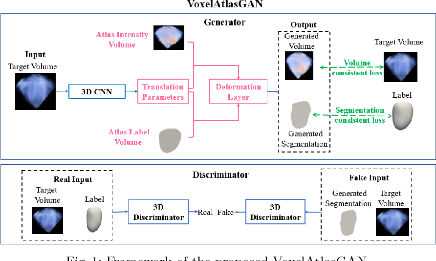 Figure 1 for VoxelAtlasGAN: 3D Left Ventricle Segmentation on Echocardiography with Atlas Guided Generation and Voxel-to-voxel Discrimination
