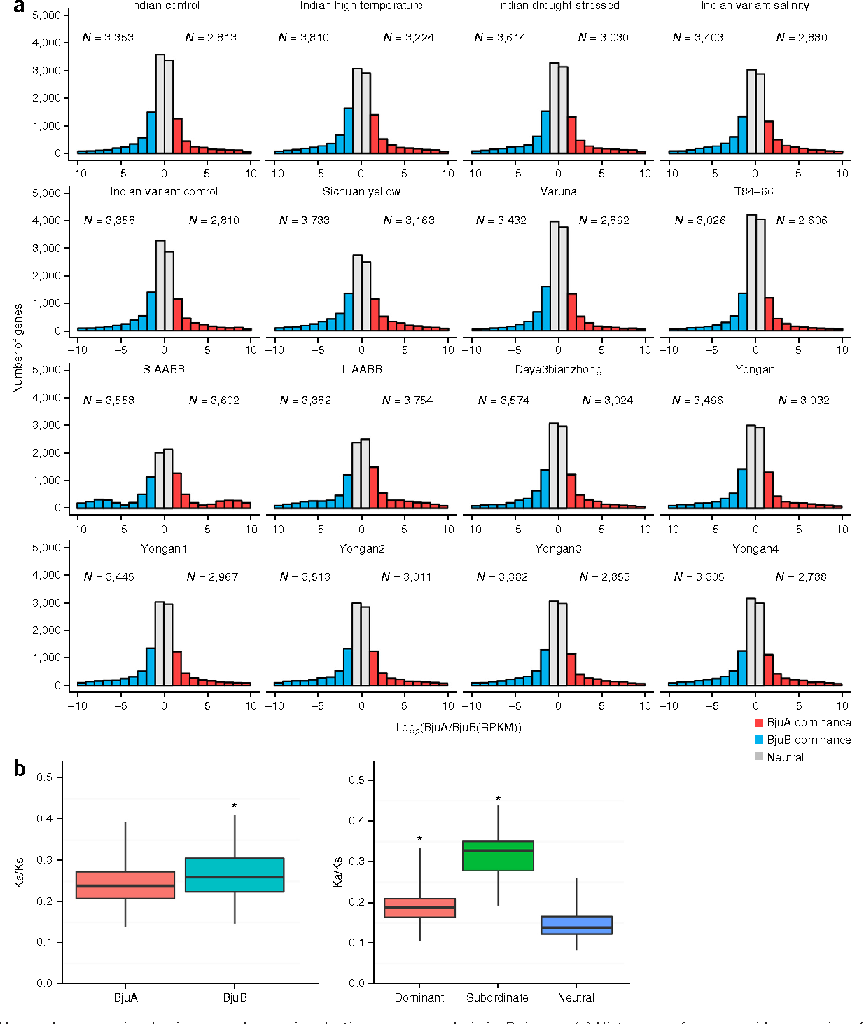 Figure 3 Homoeolog expression dominance and genomic selective pressure analysis in B. juncea. (a) Histograms of genome-wide expression of syntenic homoeologous genes among indicated B. juncea tissues and developmental stages. N values indicate the number of dominant genes in BjuA and BjuB, respectively. (b) Boxplot of the distribution of Ka/Ks values between subgenomes (BjuA and BjuB) and among homoeolog expression dominance genes as dominant, subordinate and neutral (non-dominance) in B. juncea. In the left boxplot, Ka/Ks values range from 0.139 to 0.393 with median value 0.238 and interquartile range (IQR) value 0.209 for BjuA, and Ka/Ks values range from 0.147 to 0.411 with median value 0.260 and IQR value 0.224 for BjuB. In the right boxplot, Ka/Ks values range from 0.106 to 0.334 with median value 0.189 and IQR value 0.164 for dominant group, and Ka/Ks values range from 0.193 to 0.438 with median value 0.328 and IQR value 0.279 for subordinate group, and Ka/Ks values range from 0.082 to 0.260 with median value 0.139 and IQR value 0.123 for neutral group. *P < 0.001, permutation test with 1,000 permutations.