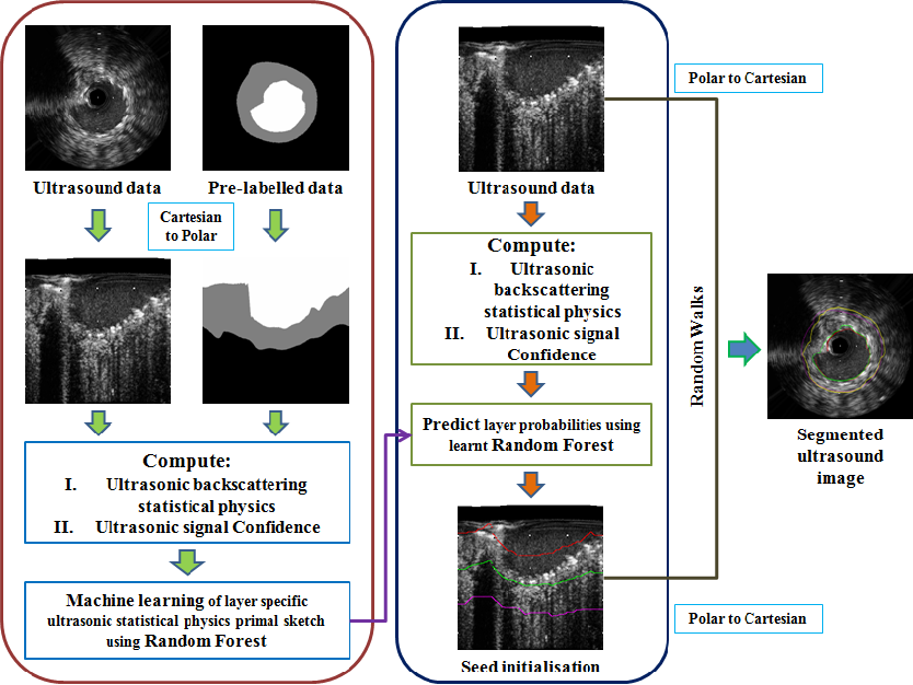Figure 1 for Segmentation of Lumen and External Elastic Laminae in Intravascular Ultrasound Images using Ultrasonic Backscattering Physics Initialized Multiscale Random Walks