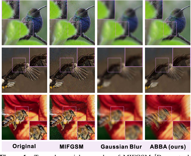 Figure 1 for ABBA: Saliency-Regularized Motion-Based Adversarial Blur Attack