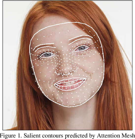 Figure 1 for Attention Mesh: High-fidelity Face Mesh Prediction in Real-time