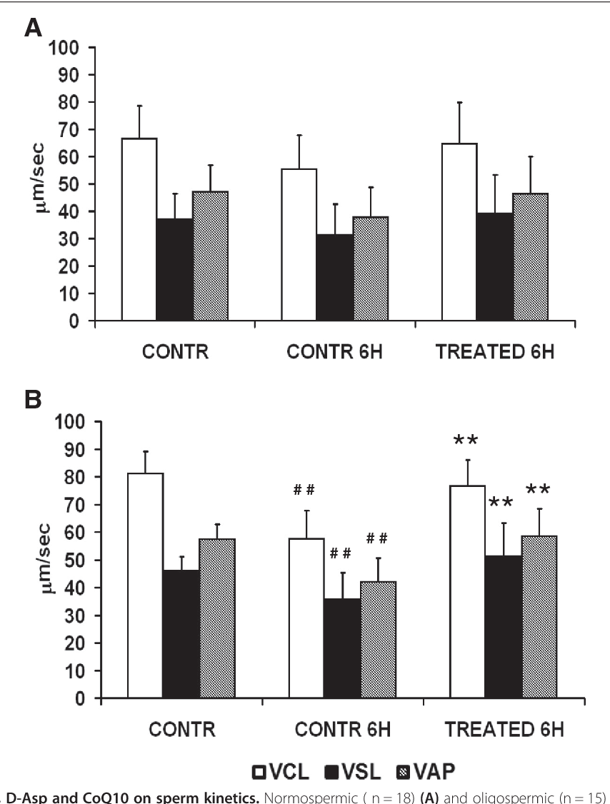 Protective effects of in vitro treatment with zinc, d-aspartate and