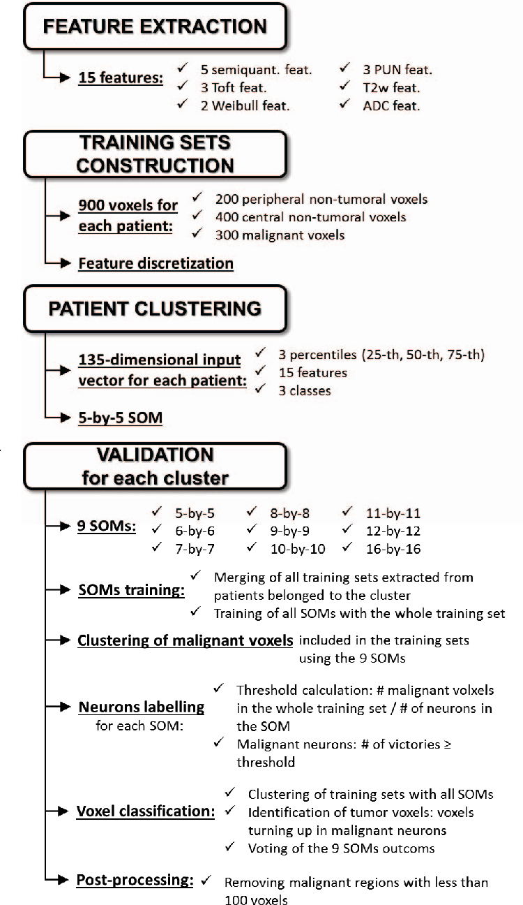 Fig. 1. Schematic representation of the procedure used in this study for patient clustering and validation.
