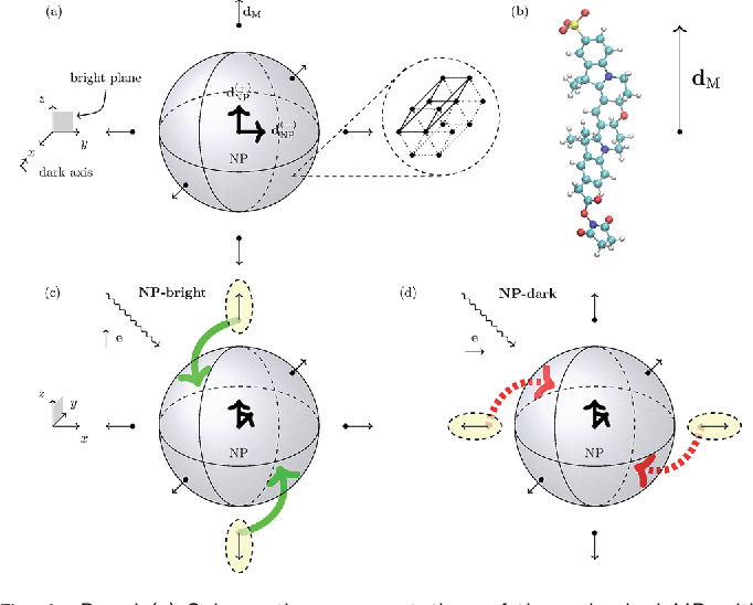 PDF] ures of anisotropic resonance energy transfer in dye