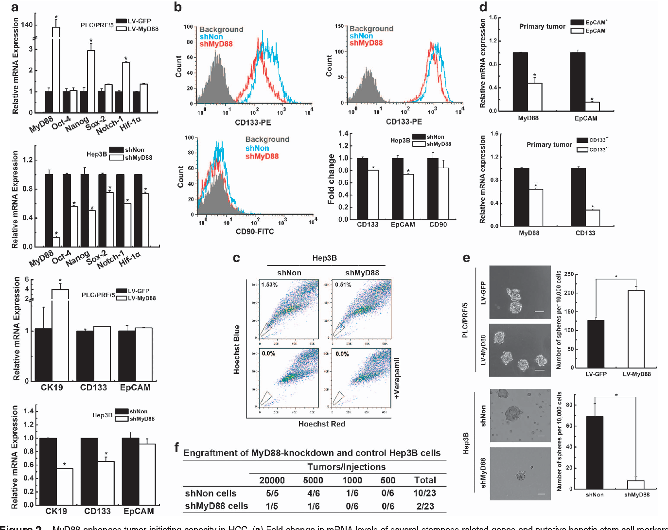 Enhanced myeloid differentiation factor 88 promotes tumor