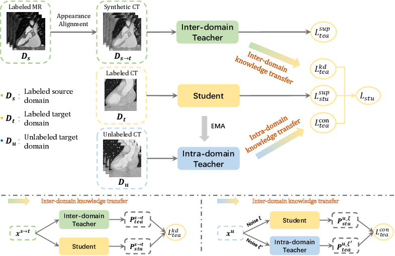 Figure 1 for Dual-Teacher: Integrating Intra-domain and Inter-domain Teachers for Annotation-efficient Cardiac Segmentation