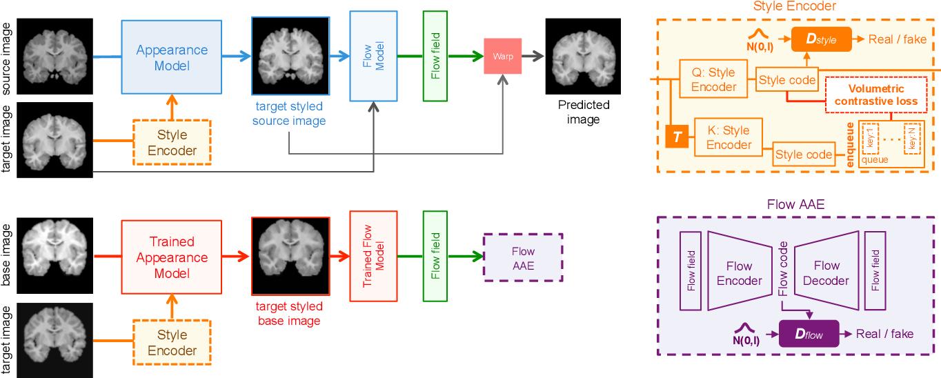 Figure 2 for Self-Supervised Generative Style Transfer for One-Shot Medical Image Segmentation