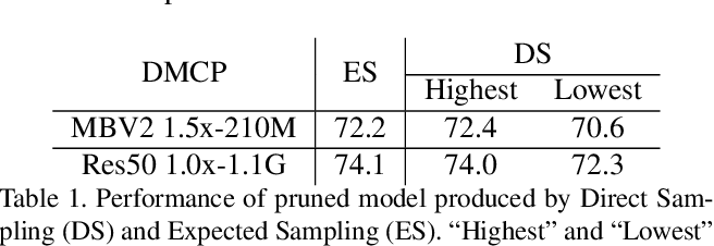 Figure 2 for DMCP: Differentiable Markov Channel Pruning for Neural Networks