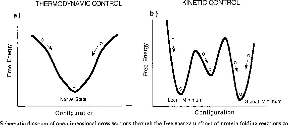 Figure 1 From Perspectives In Biochemistry Kinetics Versus