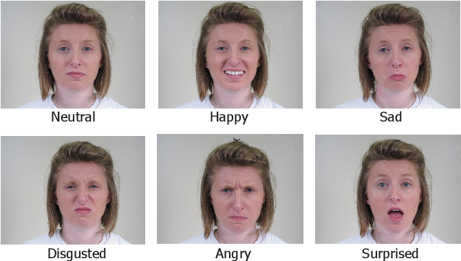 Figure 1 for Learning Emotional-Blinded Face Representations