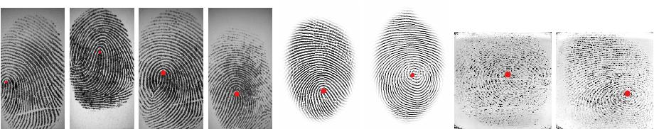 Figure 1 for SP-NET: One Shot Fingerprint Singular-Point Detector