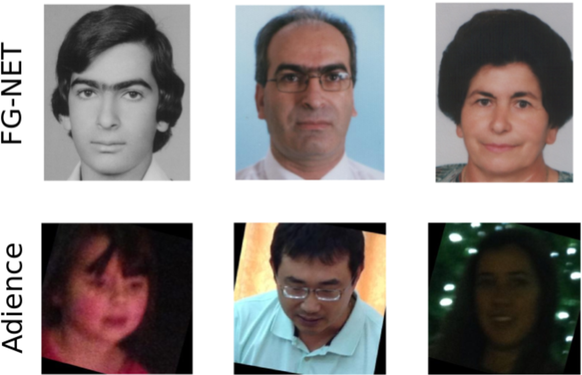Figure 2 for Modelling of Facial Aging and Kinship: A Survey