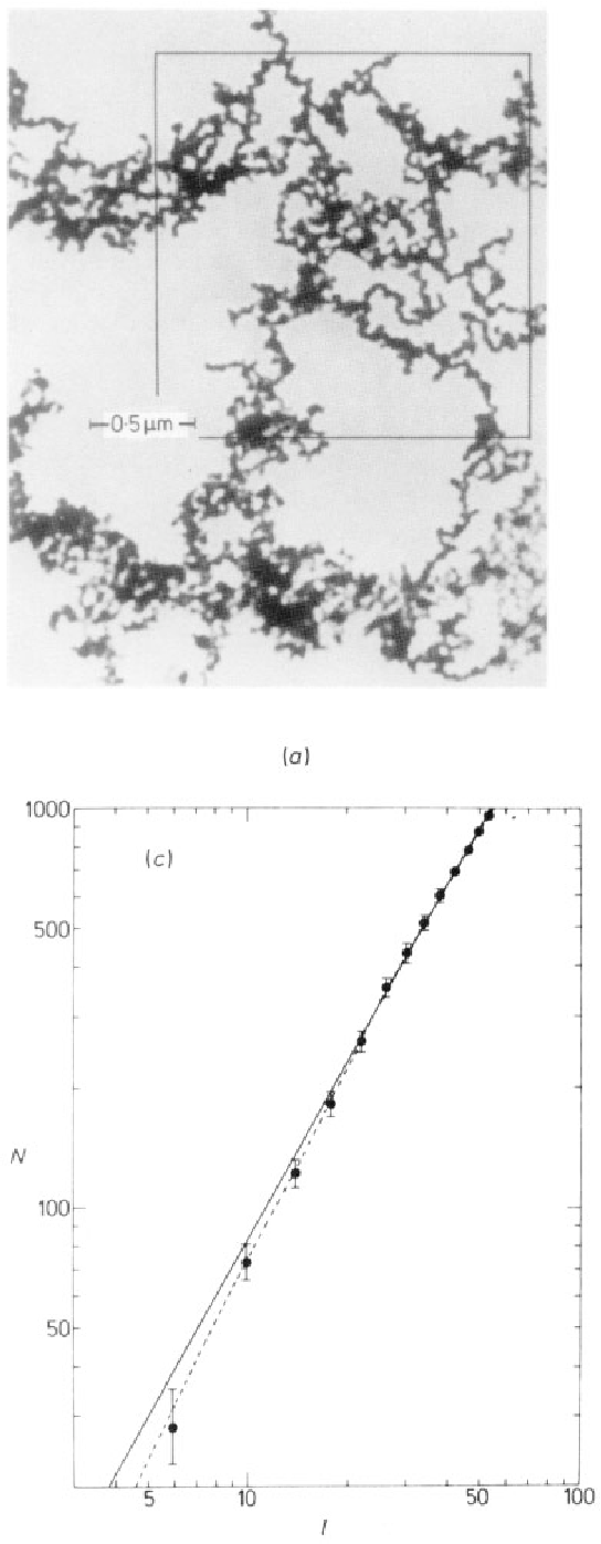 Figure 1. (a) Transmission electron micrograph of the iron aggregate used for image 2. The actual aggregate is many times larger than the segment shown. Constituent particles are roughly 35 8, in radius. The box corresponds to the outer box on the digitised image (6) . (6) A segment of the digitised image of (a) . The series of boxes used to generate the data of (c) are shown. The boxes do not appear as squares because of the format of the computer printer. (c) Result of a typical point count. Each data point corresponds to a box in Fig. lb, where N is the number of 1's counted in a box of side 1. The line, of slope D = 1.51 f 0.05, is a least squares fit to the data weighted according to the number of 1's in a given box. Several similar sets of counts are made at random starting locations on the image to determke the D quoted in table 2. The error bars (= JN) indicate the relative weight given to the various data points in fitting to a straight line. The broken line represents a least squares fit of the data to the form: N = AID e-'''O+B12 where D = 1.90*0.05 and l o - 100.