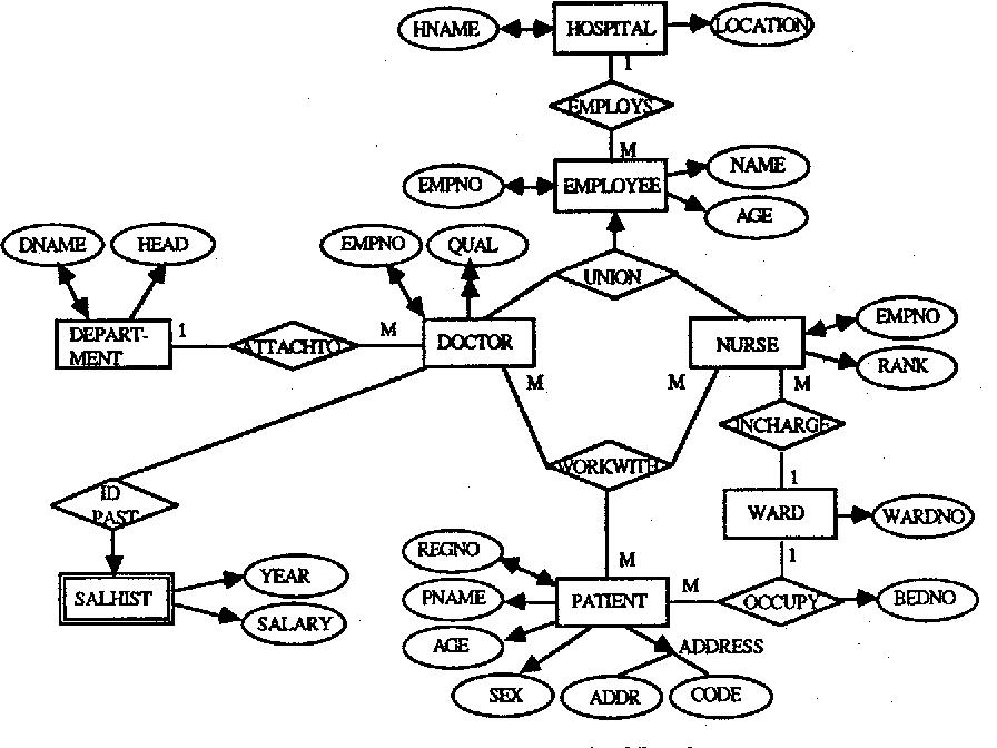 erm diagram of step