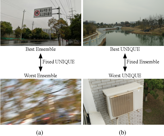 Figure 1 for Troubleshooting Blind Image Quality Models in the Wild